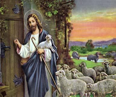 Cửa chuồng chiên